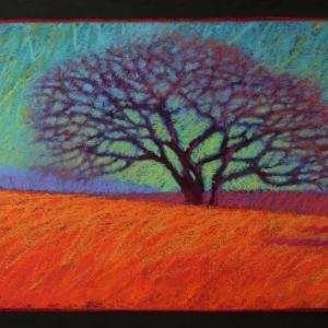 "EDGARTOWN TREE, pastel, 14""x 24"", 2014, SOLD"