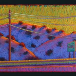 "UTILITY POLE, pastel, 20""X 32"", 2012, $1,500"