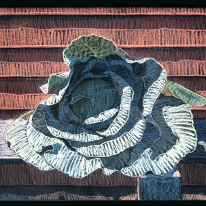 "SWIDER'S CABBAGE, pastel, 28""x 36"", 1984, SOLD"
